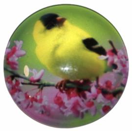 Glas cabochon 25mm: vogel op tak