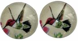 Glas flatback cabochon 12mm kolibrie per 2 stuks