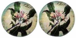 12 mm glascabochon flora, per 2 stuks