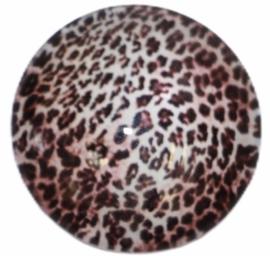 Glas cabochon 25mm: mini panter