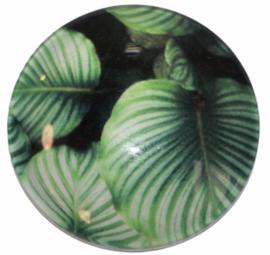 Glas cabochon 25mm: Zwart met groen blad