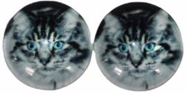Glas flatback cabochon 12mm poesje, per 2 stuks