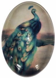 Glas cabochon pauw 18 x 25 mm