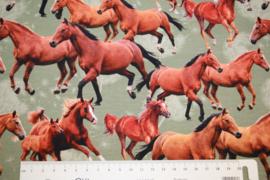 Digitale print tricot: HORSES, per 25 cm
