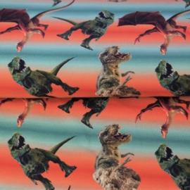 Digitale print French Terry tricot : DINO'S (Stenzo), per 25 cm