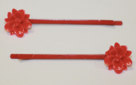 Schuifspeldjes rood, rode bloem