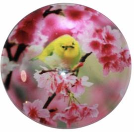 Glas cabochon 25mm: Bird yellow