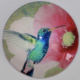 Glas cabochon 25mm: vogel
