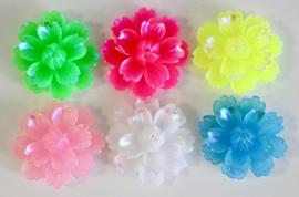 Bloemen 25 mm in 6 kleuren
