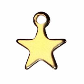 Goudkleurig sterretje (RVS) 10x8 mm, per stuk