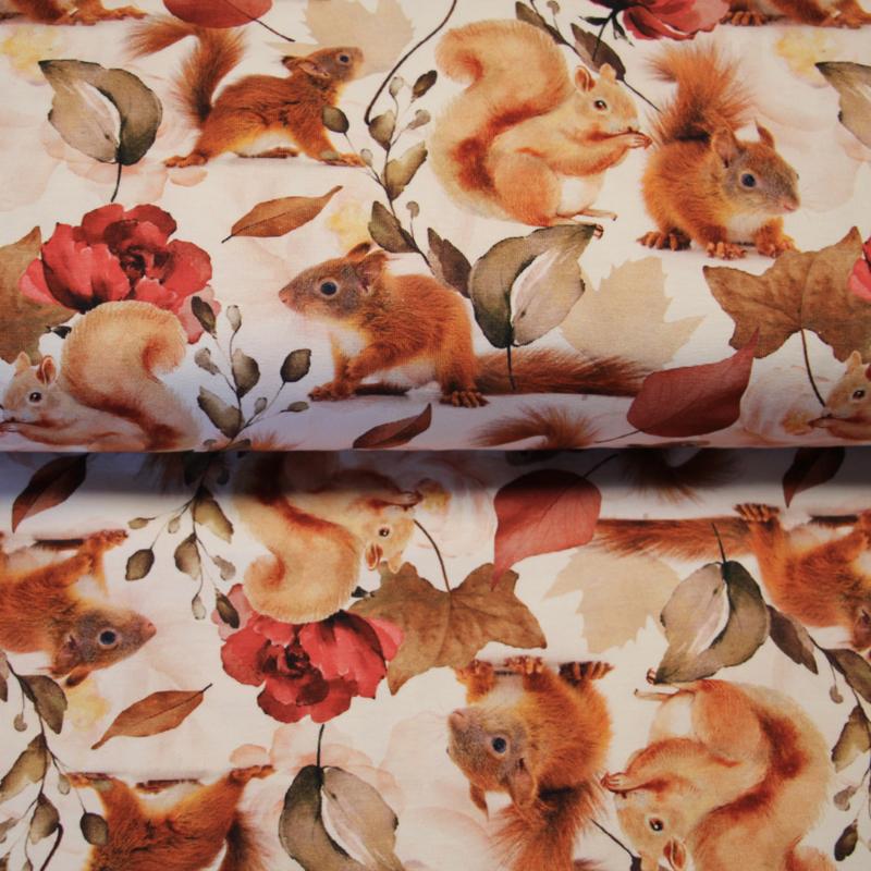Digitale print tricot: SQUIRREL, per 25 cm