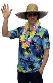 Hawai blouse oceaan