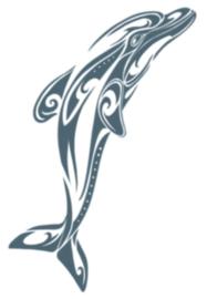 Tribal Tattoos Dolphin