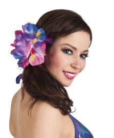Haarbloem Hybiscus multi