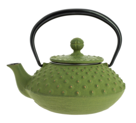 Kanbin Iwachu Teapot Golden Green 320ml
