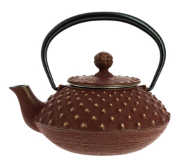 Kanbin Iwachu Teapot Golden Brown 320ml