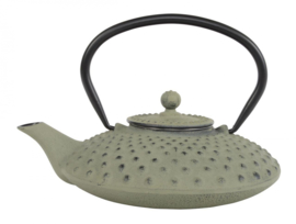 WY Tea Kettle Iron 0.8L