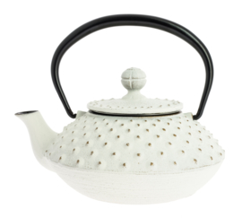 Kanbin Iwachu Teapot Golden White 320ml