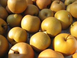 Korean Crushed Pear Juice 238ml