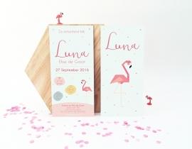 Girl - Flamingo
