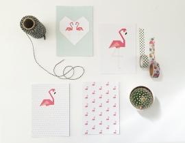 Kaartenset Flamingo