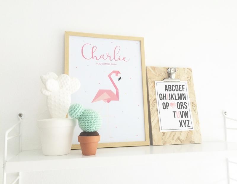 Naamposter Flamingo + lijst