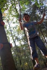 TreeFun - Boomparcours