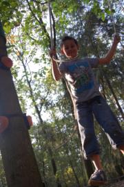 TreeFun Start - boomparcours