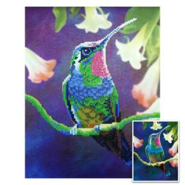 Craft Artist Diamond Art - Humming Bird
