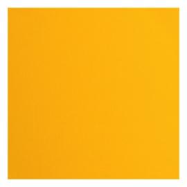 Cardstock texture 30,5x30,5cm Saffron