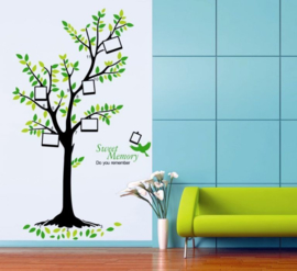 Muursticker boom met fotolijstjes