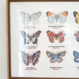 Borduur met vlinders