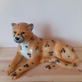 Vintage beeld cheetah
