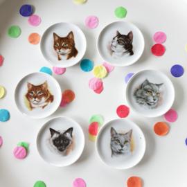 Petit fours bordjes kat