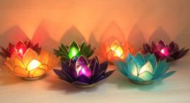 Lotus capiz sfeerlichten - set