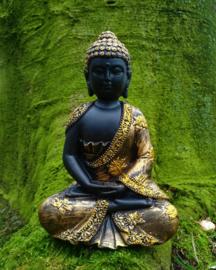 Het verhaal van Boeddha