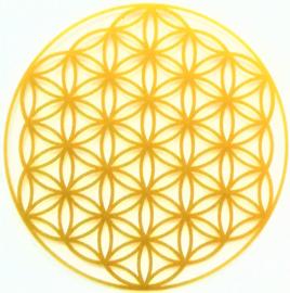 Signification Fleur de Vie