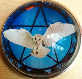 Geluksamulet 'Uil in Pentagram'