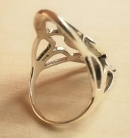 Ring Abalone schelp zilver