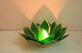 Theelicht Lotus Capiz groen