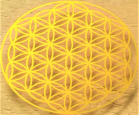 Wat is de Flower of  Life