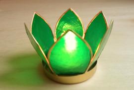 Theelicht lotus Capiz schelp  groen.