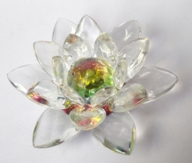Lotus Kristal
