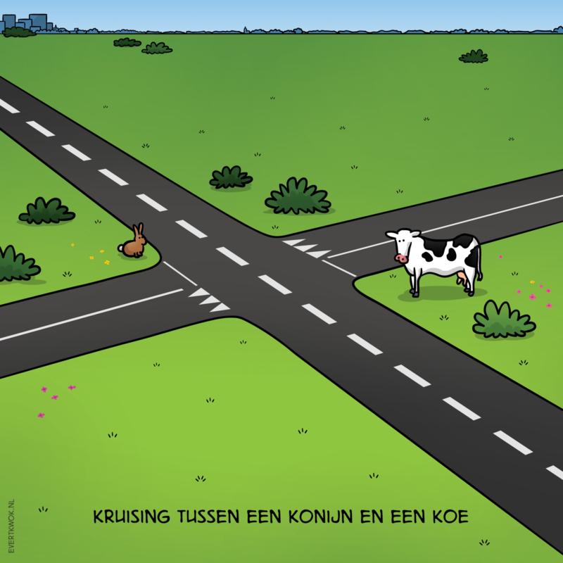 Cartoonposter 'Kruising'