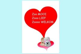 Beste Vriendjes felicitatie geboorte jongen of meisje Zoooo Welkom