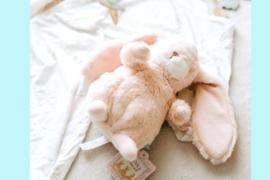 Bunnies By The Bay knuffel Konijn klein