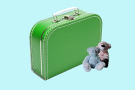 Koffertje grasgroen