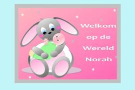 Poster babykamer geboorte baby meisje-Welkom op de Wereld
