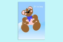 Beste Vriendjes felicitatie geboorte jongen beer op blauwe wolk