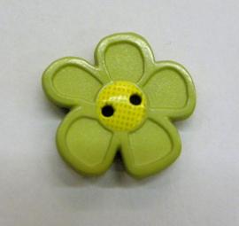 Bloem 2 cm Lime